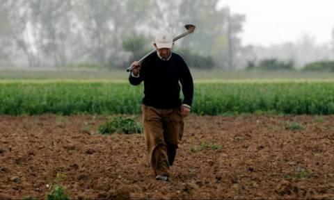 Μέσα σε 90 μέρες η επιστροφή του ΦΠΑ στους αγρότες