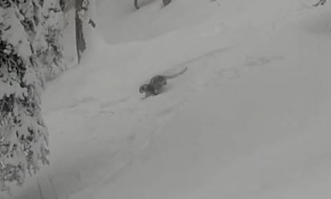 Πήγε η ψυχή του και ήρθε! Σκιέρ είδε ξαφνικά μπροστά του μια σπάνια λεοπάρδαλη! (video)