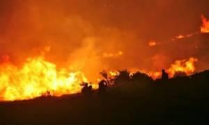 Συναγερμός για την ανεξέλεγκτη φωτιά στην ορεινή Τριφυλία