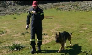 Θρίλερ στο Ηράκλειο με την εξαφάνιση 86χρονου - Αγνοείται για 5η μέρα