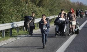 Δημοψήφισμα: Πιστεύετε ότι η ελληνική κυβέρνηση έχει χειριστεί σωστά το προσφυγικό ζήτημα;