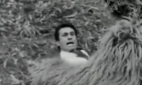 Και ποιος Ντι Κάπριο; Ο Ξανθόπουλος τα... έβαλε με αρκούδα πριν 47 χρόνια! (video)