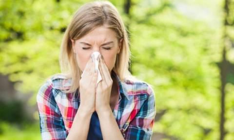 Αλλεργίες της άνοιξης: Ποια είναι τα κύρια αλλεργιογόνα