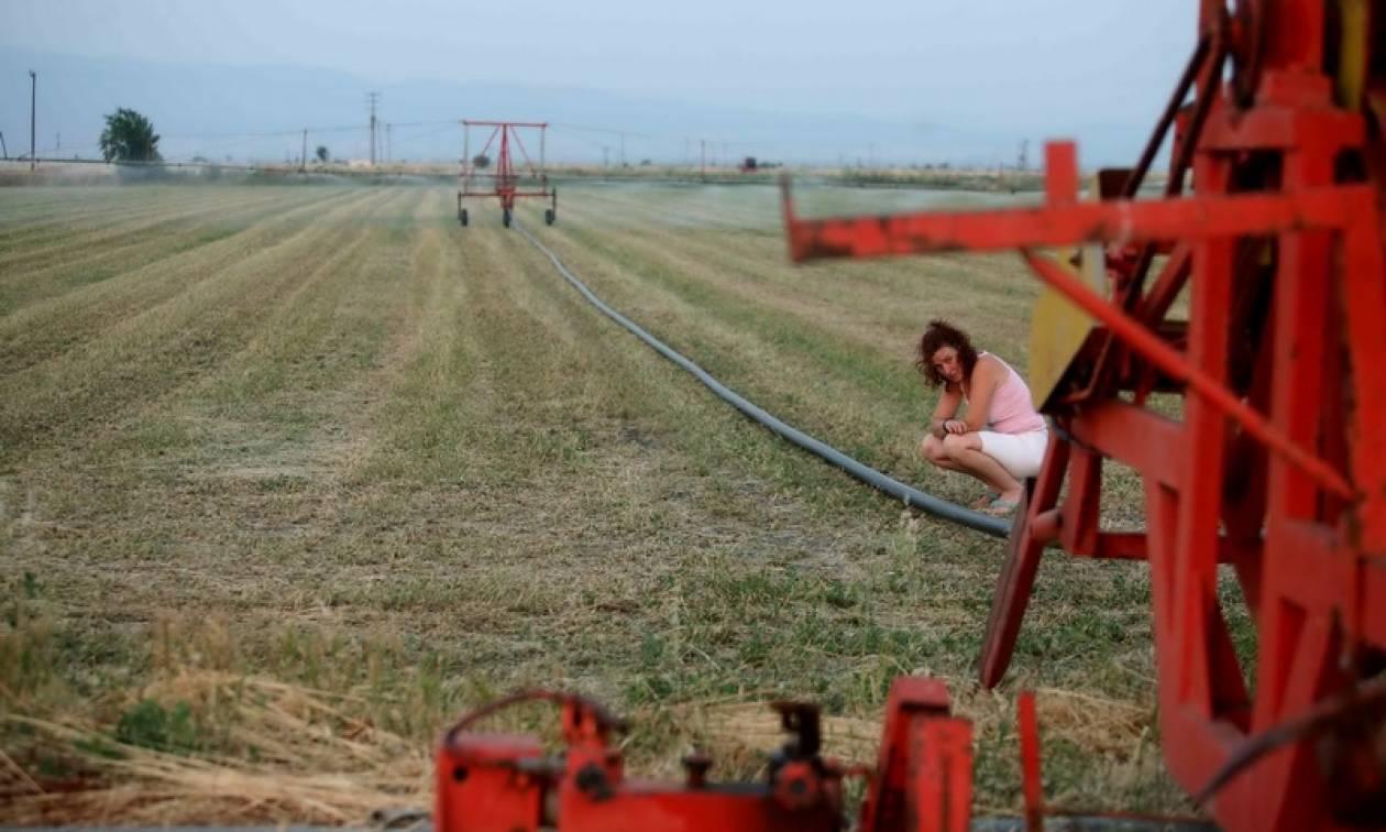 Κάρτα του Αγρότη: Οι παροχές της... «agrocarta» στους παραγωγούς