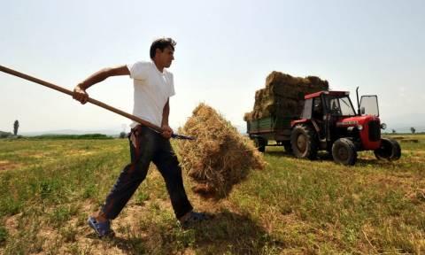 Έρχεται νέο πρόγραμμα στήριξης αγροτών σε ορεινές και νησιωτικές περιοχές