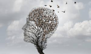 Το ρόφημα που προστατεύει τη μνήμη όσων πάσχουν από πρόδρομο Αλτσχάιμερ