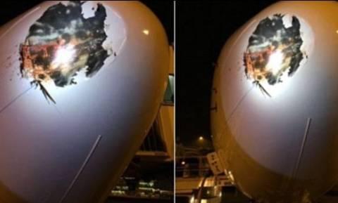 Λονδίνο: Τρομακτική σύγκρουση αεροπλάνου με πτηνό (pics)