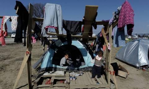 Ειδομένη: Ευρωβουλευτές των Πρασίνων χαρακτήρισαν την κατάσταση στον καταυλισμό «απαράδεκτη»