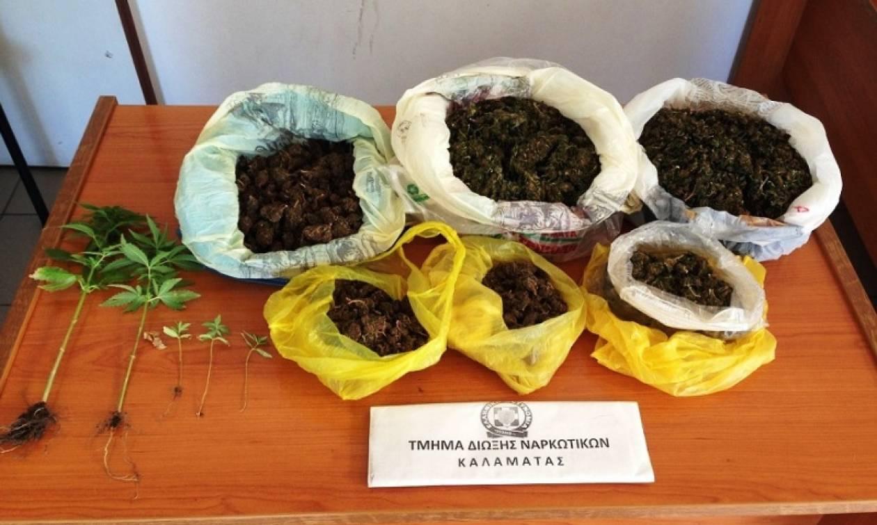Συνελήφθη 67χρονος στην Τριφυλία με ενάμιση κιλό χασίς