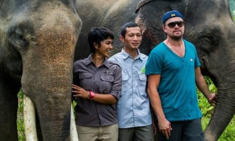Ο Λεονάρντο Ντι Κάπριο στη ζούγκλα της Ινδονησίας (pic)