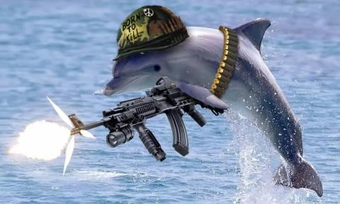 Η Ρωσία δημιουργεί στρατό από… δελφίνια; (videos)