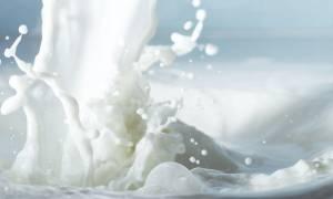 Νέα «βόμβα» για το ελληνικό γάλα