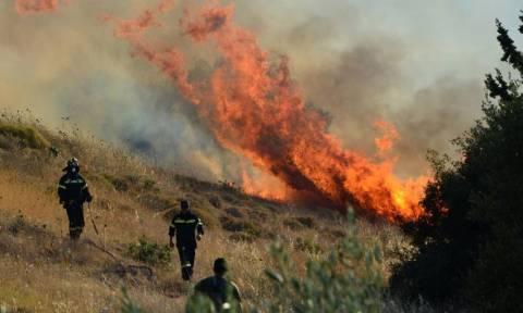 Υπό έλεγχο η μεγάλη φωτιά στην Ιεράπετρα