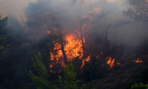 Σύλληψη για τη μεγάλη φωτιά στην Ιεράπετρα