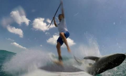 Ασύλληπτο: Σέρφερ τρακάρει με… καρχαρία! (video)
