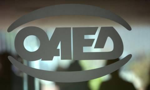 ΟΑΕΔ: «Ανοίγουν» 728 θέσεις πλήρους απασχόλησης – Ποιοι οι δικαιούχοι και τι πρέπει να κάνουν