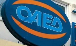 ΟΑΕΔ: Συνεχίζεται η υποβολή των αιτήσεων για το πρόγραμμα απασχόλησης 15.000 ανέργων