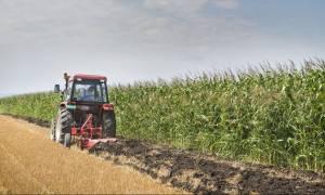 DW: «Καμπανάκι» για την κρίση στη γεωργία