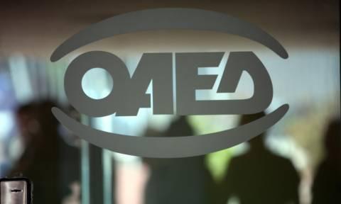 ΟΑΕΔ: Δείτε βήμα - βήμα πώς θα κάνετε την αίτηση για την Κοινωφελή Εργασία