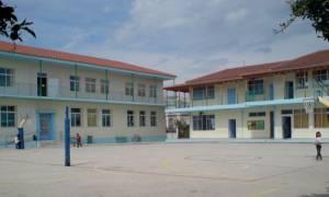 «Πράσινα δώματα» σε 13 σχολεία της Αθήνας