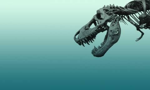 Ανατροπή όσων γνωρίζαμε για τη ζωή των δεινοσαύρων στον πλανήτη – Τι αποκαλύπτει νέα μελέτη (Vid)