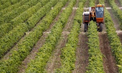 Τη Μεγάλη Εβδομάδα πληρωμές 650 εκατ. ευρώ στους αγρότες