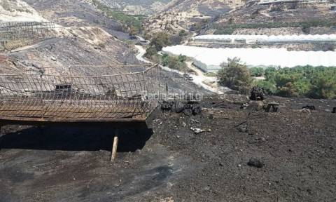 Ιεράπετρα: Τεράστια η καταστροφή από τη μεγάλη πυρκαγιά (photos)