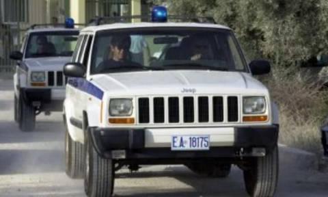 «Μπαράζ» συλλήψεων σε αστυνομική επιχείρηση στη Στερεά Ελλάδα