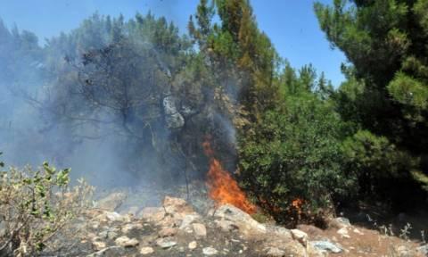 Ηράκλειο: Υπό έλεγχο η πυρκαγιά στα Καλύβια