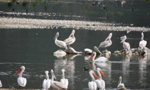 H εντυπωσιακη λίμνη Κάρλα (vid)