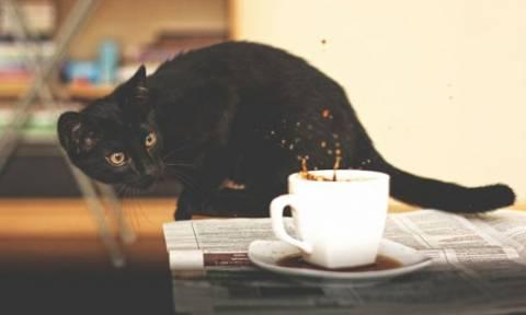 Και τον καφέ θα τον χύσει!