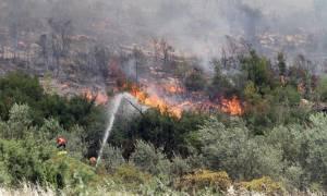 Συναγερμός στην Πυροσβεστική: Πυρκαγιά στον Άγιο Στέφανο