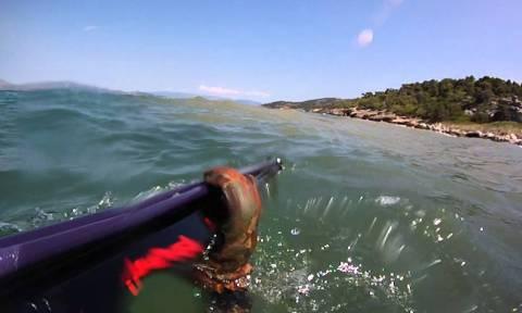 Alert! Αυτές είναι οι τρεις μυστικές παραλίες της Αττικής! (video)