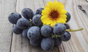 Χρόνια φλεγμονή: Ποιες τροφές την καταπολεμούν