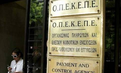 ΟΠΕΚΕΠΕ: Έτσι θα συμπληρώσετε σωστά την αίτηση ενιαίας ενίσχυσης για σωστή πληρωμή