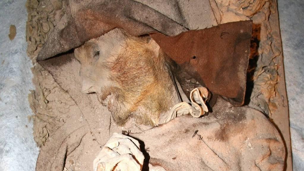 Έκπληκτοι αρχαιολόγοι ανακάλυψαν μούμια του «Βαν Γκογκ» σε ισπανική εκκλησία (Pics & Vid)
