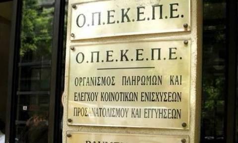 ΟΠΕΚΕΠΕ: Όποιος δεν υποβάλλει την αίτηση ενιαίας ενίσχυσης μέχρι τις 15/6 θα λάβει ποινή