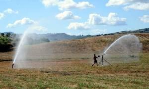 Περιφέρεια Στερεάς Ελλάδας: Πρόγραμμα επιδότησης για νέους αγρότες - Δείτε όλες τις λεπτομέρειες