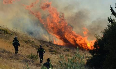 Υπό μερικό έλεγχο η φωτιά νότια του Σάνη στη Χαλκιδική