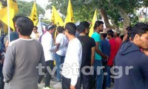 «Νέα Μανωλάδα» καταγγέλλει η Πακιστανική κοινότητα της Θήβας (vid)