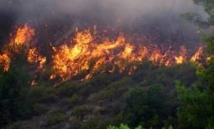 Ανεξέλεγκτη η φωτιά στη Ρόδο - Τι είπε στο CNN Greece ο αντιδήμαρχος