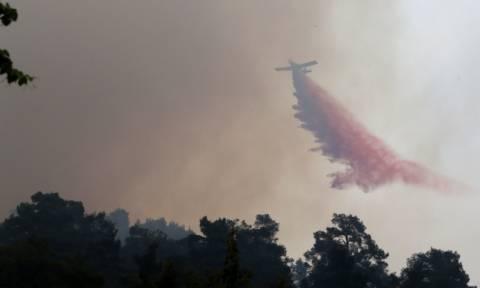 Κύπρος: Υπό έλεγχο τέθηκε η φονική πυρκαγιά