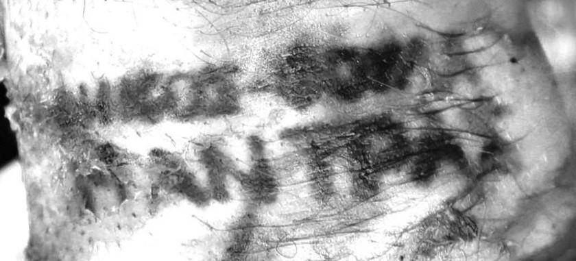 Στην αριστερή πηχεοκαρπική χώρα, τις λέξεις «ΝΙΚΟΣ-ΦΟΥΛΑ» και «ΜΑΝΤΡΑΣ» ή «ΗΑΝΤΡΑΣ»