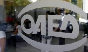 ΟΑΕΔ: Ξεκινά την Τρίτη η υποβολή αιτήσεων στις Επαγγελματικές Σχολές Μαθητείας