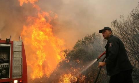 Τώρα: Μεγάλη φωτιά μαίνεται στους Θρακομακεδόνες