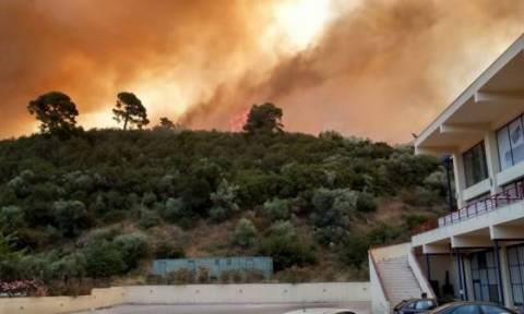 Χαλκιδική: Υπό μερικό έλεγχο η φωτιά στο Νέο Μαρμαρά