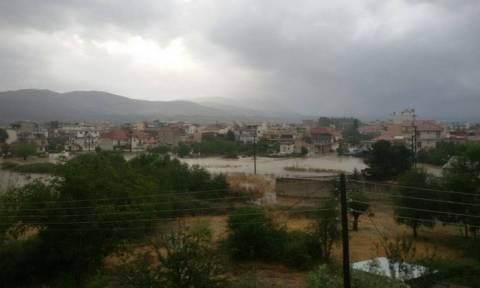 «Άνοιξαν οι ουρανοί» στη Μεγαλόπολη - Σε κατάσταση έκτακτης ανάγκης κηρύσσεται η πόλη