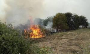 Φωτιά ΤΩΡΑ: Μεγάλη πυρκαγιά στα Δερβενοχώρια