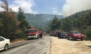 Φωτιά Δερβενοχώρια: Πτώση πυροσβεστικού αεροσκάφους Καναντέρ