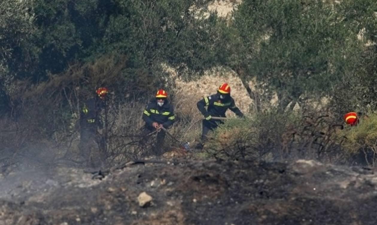 Φωτιά-Χαλκιδική: Υπό πλήρη έλεγχο